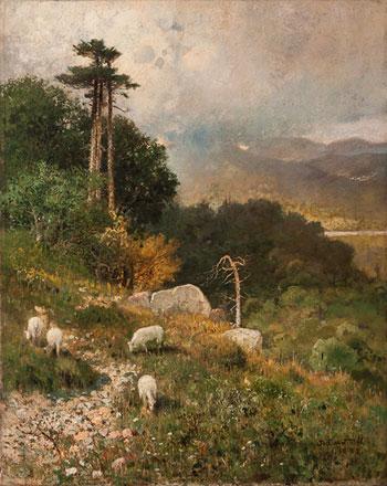 Sheep/Landscape