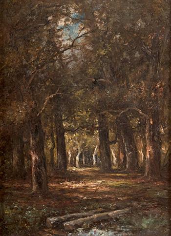 Barbizon Forest Landscape